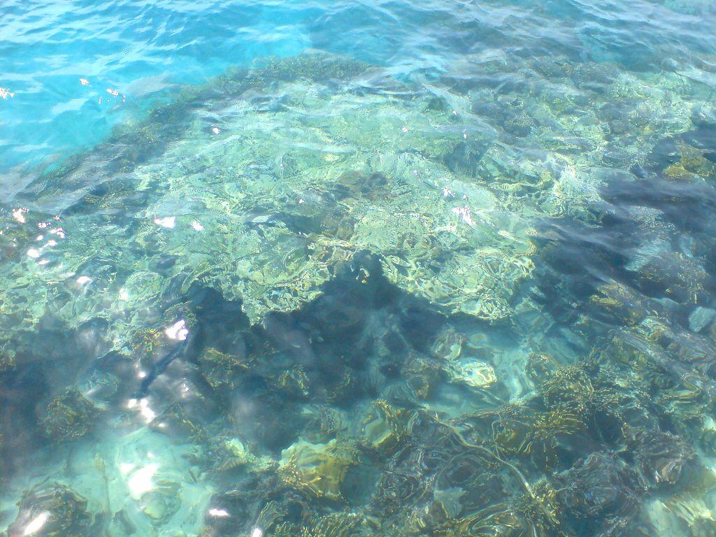 Lautnya Beniiing Banget!