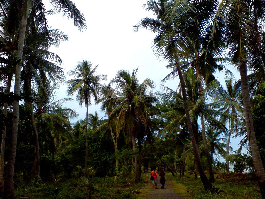 Suasana dalam Pulau Tidung Kecil