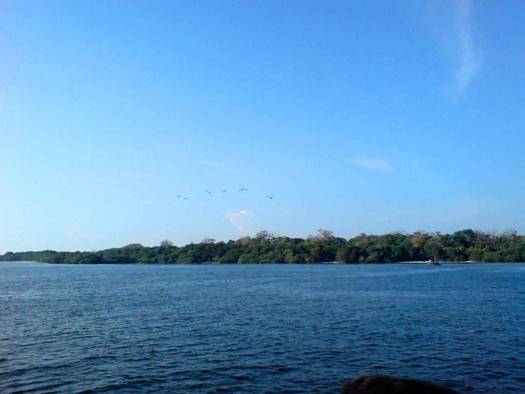 Pulau Rambut!